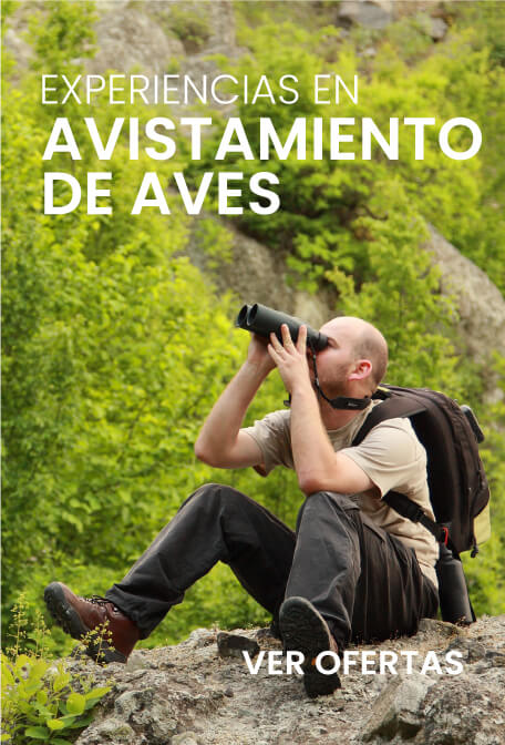 Promociones transmundialviajes.com